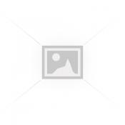 Αμινοξέα - BCAAs